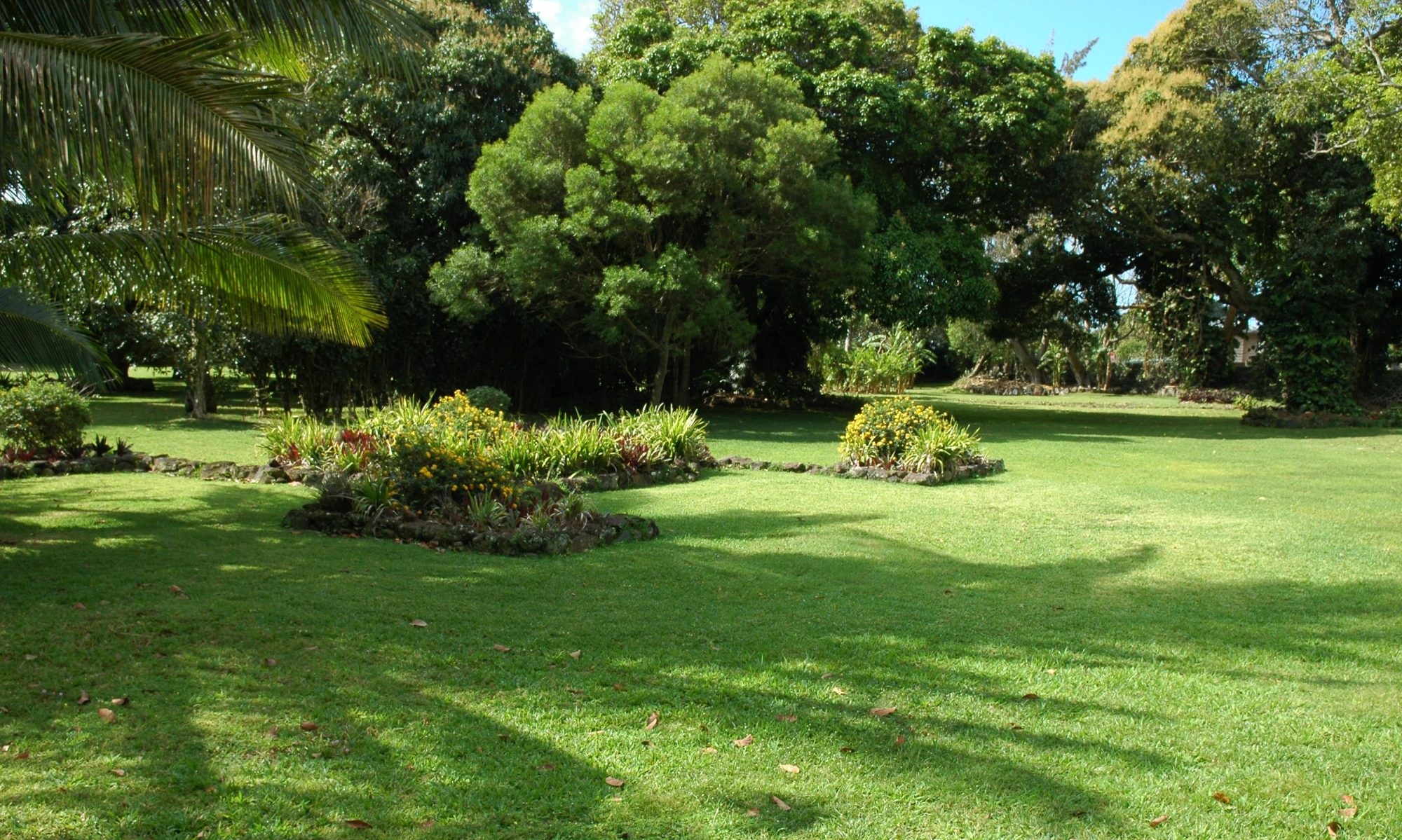 Hawaiian Garden History and Design